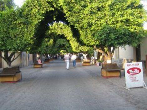 Loreto_market20050621065633